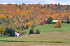 Vermont Fall Foliage, Mount Mansfield, Vermont. Vermont Fall Foliage with Barn and Houses, Jeffersonville, Vermont, USA royalty free stock photo