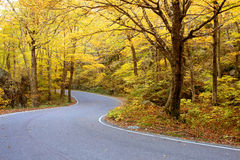 Vermont falllövverk Arkivbilder