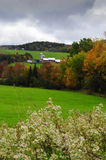 Vermont Farm in fall. A farm in Vermont surrounded by fall leaves Stock Photo