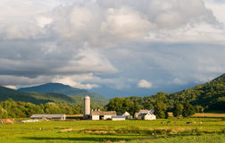 Vermont farm under cloudy summer skies. Pastoral dairy farm late afternoon, brightly sunlit under cloudy sky.  Horizontal format with room for copy Stock Photography