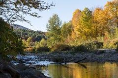 Vermont flod på hösten Arkivbild