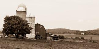 Vermont-Molkereiszene in Schwarzweiss Stockfotos