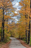 Vermont path in Autumn Stock Photo