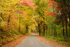 Vermont road in autumn. A local road in vermont with colorful autumn foliage Stock Photos