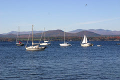 Vermont Sailboats. Landscape in Vermont during the fall showing the changing foliage, sailboats, and lake Royalty Free Stock Photo