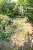 Vernachlässigte russische Gräber in Shipka-Kloster in Bulgarien Lizenzfreies Stockbild