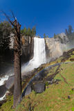 Vernal falls with rainbow Royalty Free Stock Photo