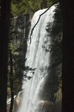 Vernal Falls Through Trees Royalty Free Stock Photography