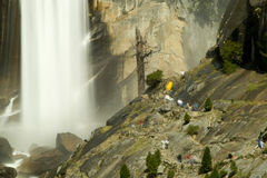 Vernal Falls Royalty Free Stock Images