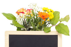 Vernal flowers behind blank blackboard. Beautiful vernal flowers behind blank blackboard stock image
