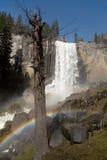 Vernal nedgångar med regnbågen Arkivbilder