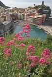 Vernazza, Cinque Terre, Italy. Vernazza, view from the footpath.Vernazza is one of five famous villages of Cinque Terre, suspended between sea and land on sheer stock photography