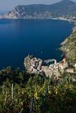 Vernazza, en by och ving?rd i Cinque Terre Panorama av byn av Vernazza och av ving?rdarna av Shiacchetren arkivfoton