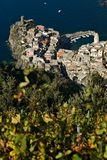 Vernazza, uma vila e vinhedo em Cinque Terre Panorama da vila de Vernazza e dos vinhedos do Shiacchetr fotos de stock royalty free
