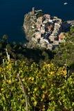 Vernazza, un villaggio e vigna in Cinque Terre Panorama del villaggio di Vernazza e delle vigne dello Shiacchetr fotografia stock