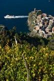 Vernazza, un villaggio e vigna in Cinque Terre Panorama del villaggio di Vernazza e delle vigne dello Shiacchetr fotografia stock libera da diritti
