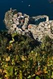 Vernazza, un villaggio e vigna in Cinque Terre Panorama del villaggio di Vernazza e delle vigne dello Shiacchetr fotografie stock libere da diritti