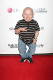 Verne Troyer Stock Photography