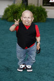 Verne Troyer Stock Photos