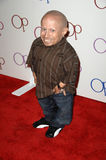 Verne Troyer Stock Image