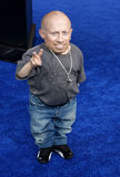Verne Troyer Photos stock