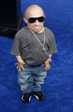 Verne Troyer Photographie stock