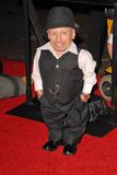 Verne Troyer royalty free stock image