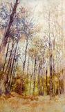 Verniciatura acrilica delle impressioni dell'olio della foresta asciutta royalty illustrazione gratis