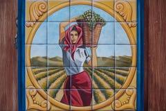 Verniciatura della donna che seleziona l'uva in mattonelle attinte una vigna fotografie stock