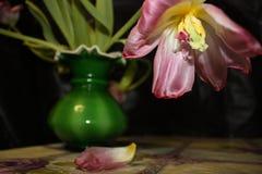 Vernietigde bloem royalty-vrije stock foto's
