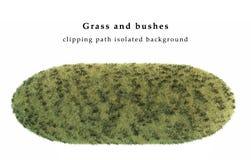 Vernietigde geïsoleerd gras en struiken Stock Fotografie
