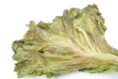 Vernietigde groenten: Geïsoleerd op witte achtergrond met het knippen stock afbeeldingen