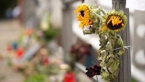 Vernietigde Zonnebloemen en kaarsen op de weg royalty-vrije stock foto's