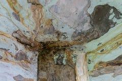 Vernietigende actie van een lek dak stock afbeeldingen