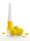 Vernis à ongles jaune et fleurs jaunes, pétales Photographie stock libre de droits