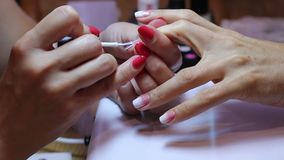 Verniz para as unhas do rosa e o branco após o tratamento de mãos Ideia do close-up da pintura fêmea do prego Criando um inclinaç filme