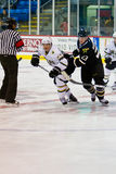 Vernon Fiddler And Tom Wandell Royalty Free Stock Photos