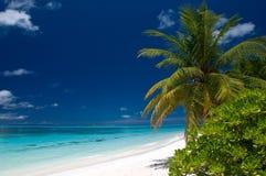 Verão em uma praia tropical Fotos de Stock Royalty Free