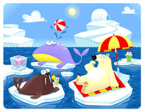 Verão ou inverno no Pólo Norte. Fotografia de Stock