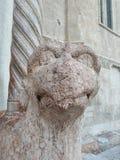 Verona - domkyrka - huvudsaklig ingång - höger grip arkivfoto
