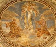 Verona - fresco del Virgen María como Inmaculada Concepción Foto de archivo libre de regalías