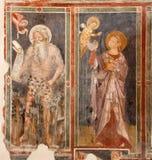 Verona - freskomålning av profeten av kyrkliga San Fermo Maggiore från. cent 13. Royaltyfri Bild