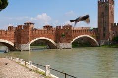 Verona  Italy Castelvecchio Royalty Free Stock Photography