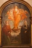 Verona - presupposto della st Mary Magdalen. Pittura dall'altare laterale nella chiesa di Anastasia del san Immagine Stock Libera da Diritti