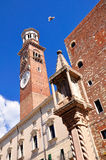 Verona`s tower. Royalty Free Stock Photo