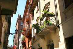 Verona street scene Stock Images