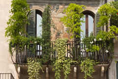Verona (Veneto, Italy), Piazza Erbe. Historic house with frescos and plants royalty free stock photography