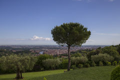 Verona, widok od Agriturismo San Mattia Zdjęcia Royalty Free