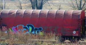 Veronachtzaamde sleepwagen stock foto's