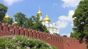 Veronderstellingskathedraal van Moskou het Kremlin Stock Foto